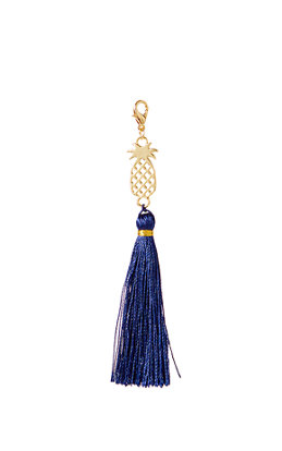 Removable Pineapple Zipper Pull With Tassel